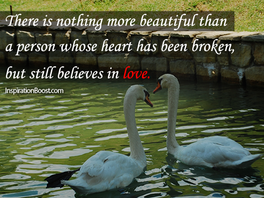 Swan, Love Quotes, Swan Quotes, Believe Quotes, Inspirational Quotes, Motivational Quotes