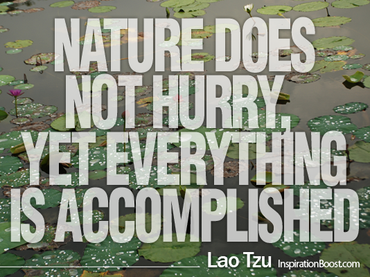 Lao Tzu, Lao Tzu Quotes, Quotes, Lao Tzu Words, Lao Tzu Quote, te tao ching, laotzu, quotes from Lao Tzu