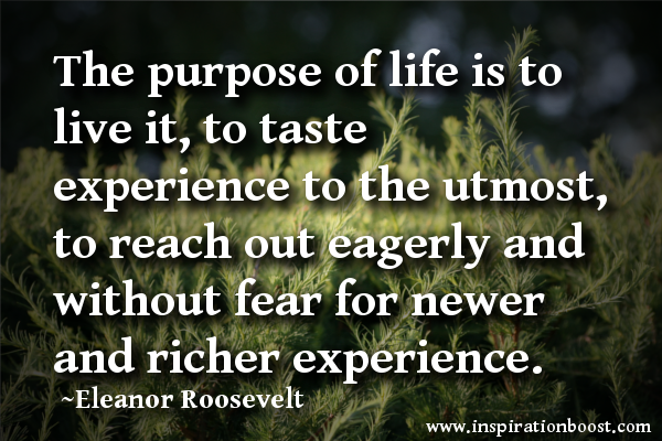 The Purpose Of Life Is To Live It, To Taste Experience To The Utmost .
