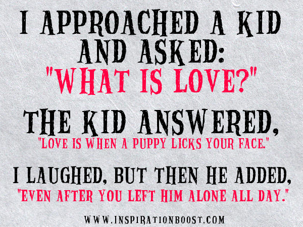 Quotes About Love Is Love : ... what is love the kid answered love is when a puppy licks your face