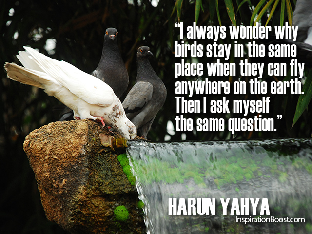 Harun Yahya Quotes