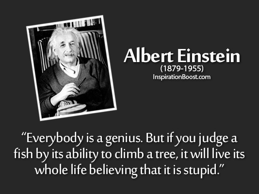 Albert Einstein - Stupid Quotes