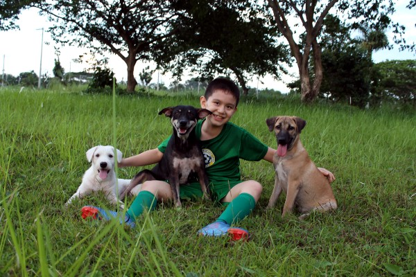 Ken with his dogs - Happy Animals Club
