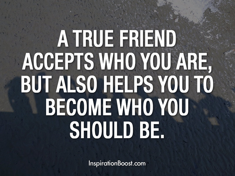 Quotes About Real Friendship Fair True Friendship Quotes  Inspiration Boost