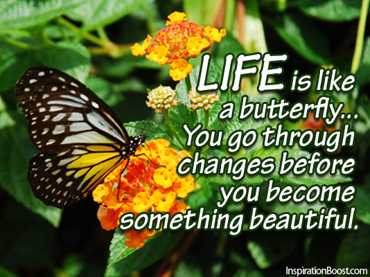 Life Is Like A Butterfly Inspiration Boost